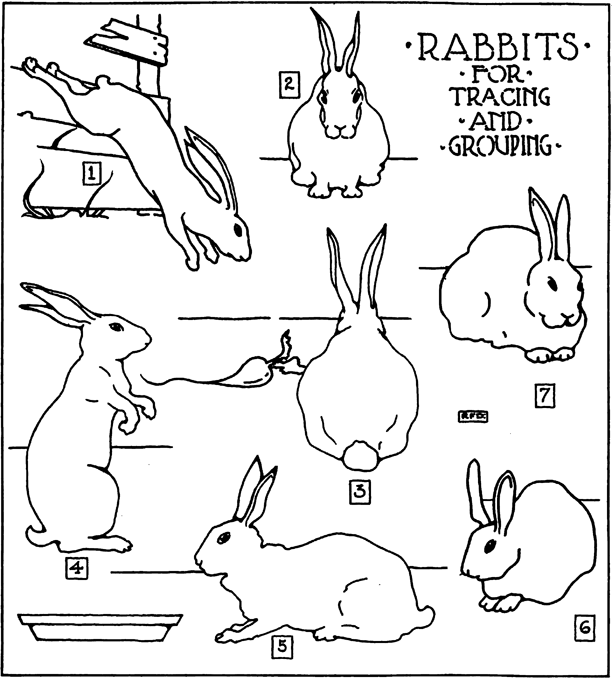 612x681 How To Make Pop Up Easter Bunny Rabbit Cards Crafts Idea