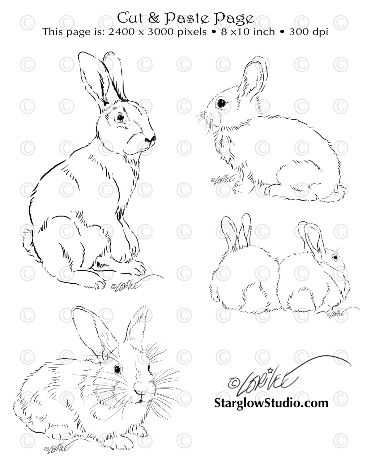 1200x1500 4 Bunny Rabbit Drawings Clip Art Sketches By Starglowstudio
