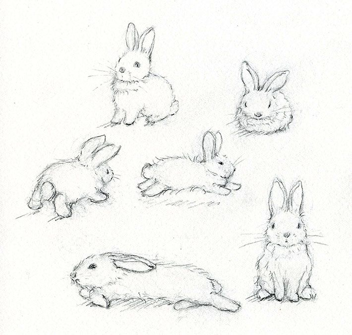 710x677 Adorable Art Learn How To Paint A Beautiful Bunny Rabbit, Bunny
