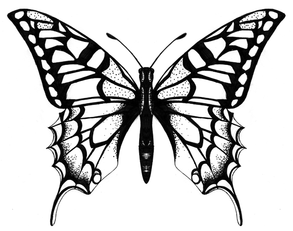 600x474 New Butterfly Tattoo Drawings Butterfly Tattoo By Soha Butterfly