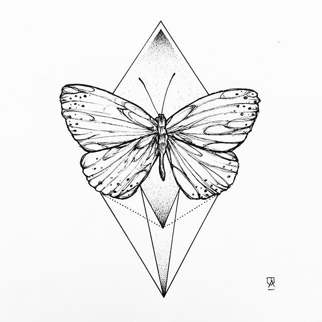 640x640 The Best Butterfly Line Drawing Ideas On Paisley