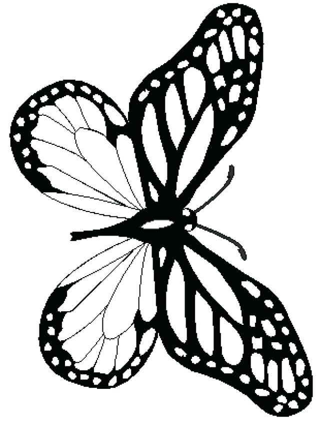 640x844 Cute Butterfly Coloring Pages Cute Butterfly Line Drawing Coloring
