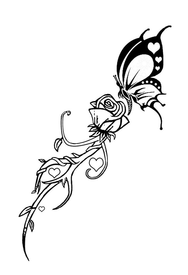 736x1074 52 Best Butterfly And Roses Tattoo Art Images