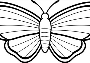 300x210 Drawing For Kids Butterfly