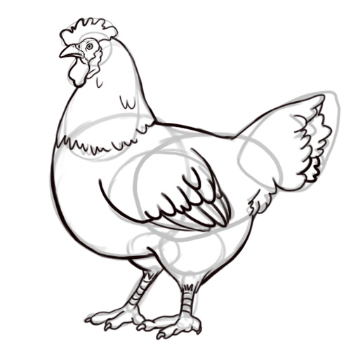 Line Drawing Chicken
