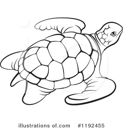 400x420 Sea Turtle Clipart Line Drawing