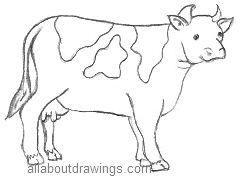 240x176 Easy Cartoon Drawings