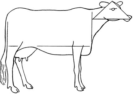 430x305 How To Draw Cows