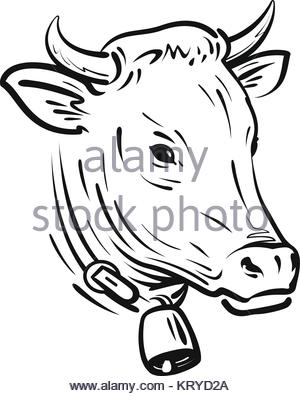 300x396 Line Drawing Of Cow And Calf Stock Photo 32482420