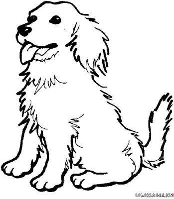 Line Drawing Dog