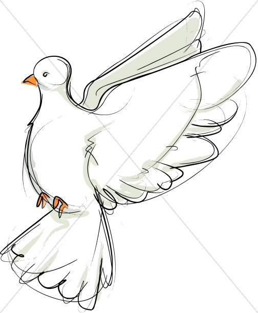 504x612 Flying Dove Sketch Facing Left Dove Clipart