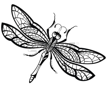 Line Drawing Dragonfly