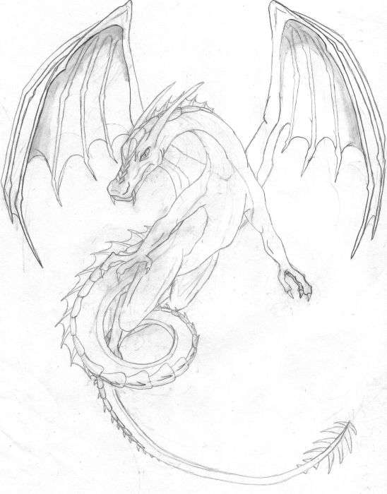 548x700 Awesome Drawings Of Dragons Drawing Dragons, Step By Step