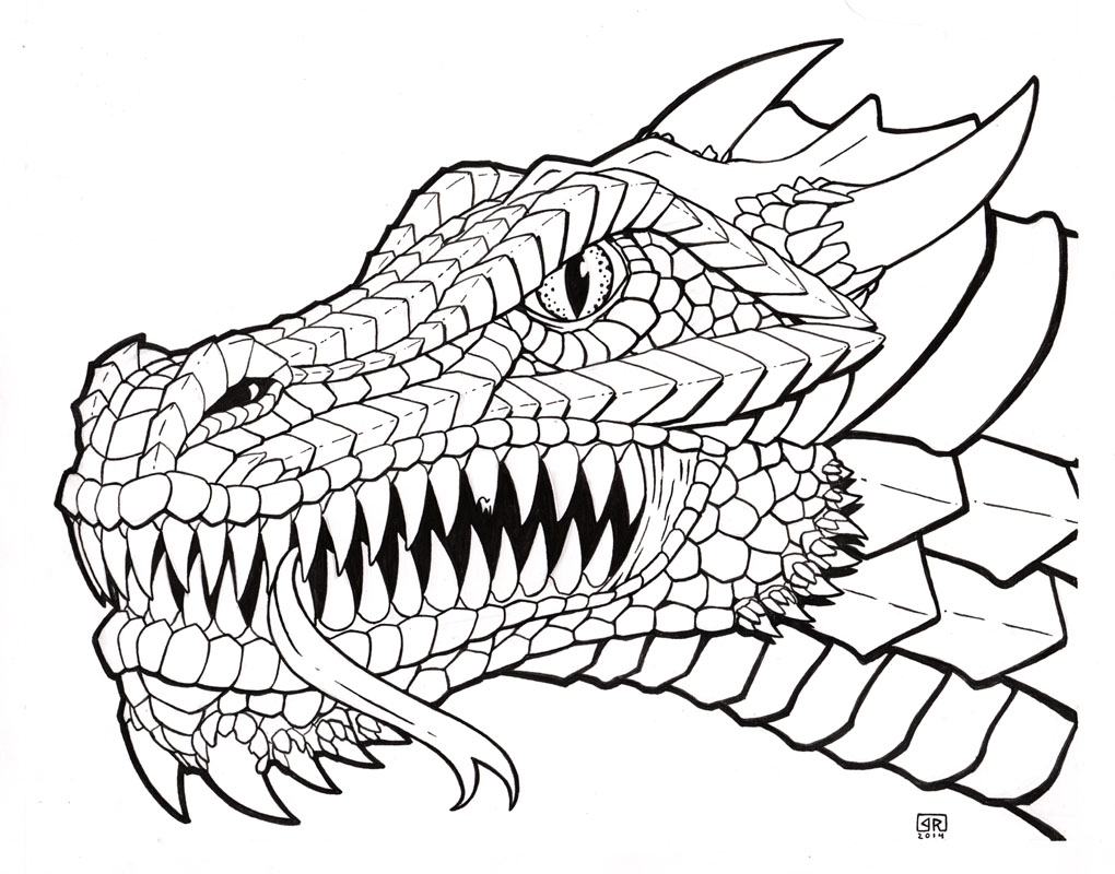 1020x800 Dragon Head Line Art By Therigger