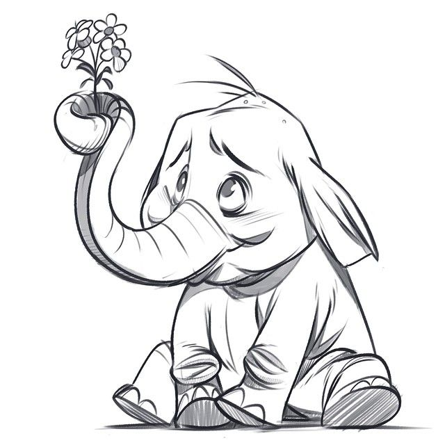 Line Drawing Elephant