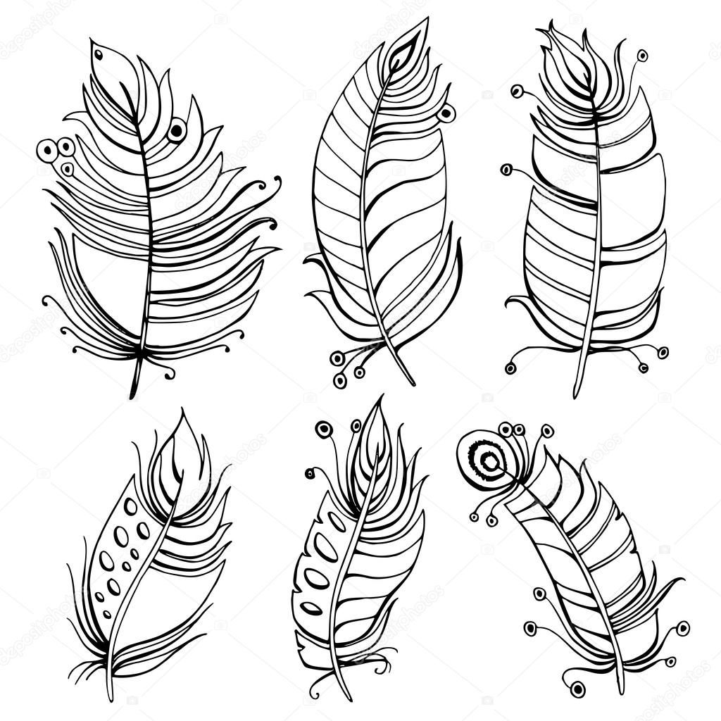 1024x1024 Hand Drawn Line Art Of Feathers With Ornaments Stock Vector