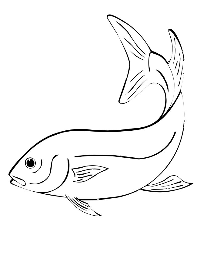 650x841 fish template 50 free printable pdf documents download free