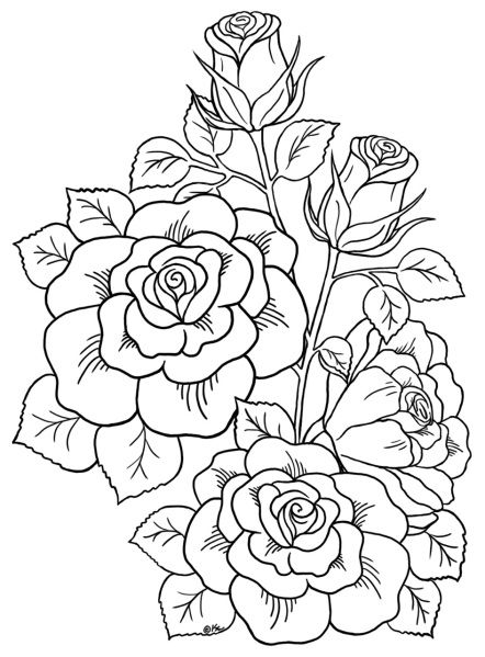 Line Drawing Flowers