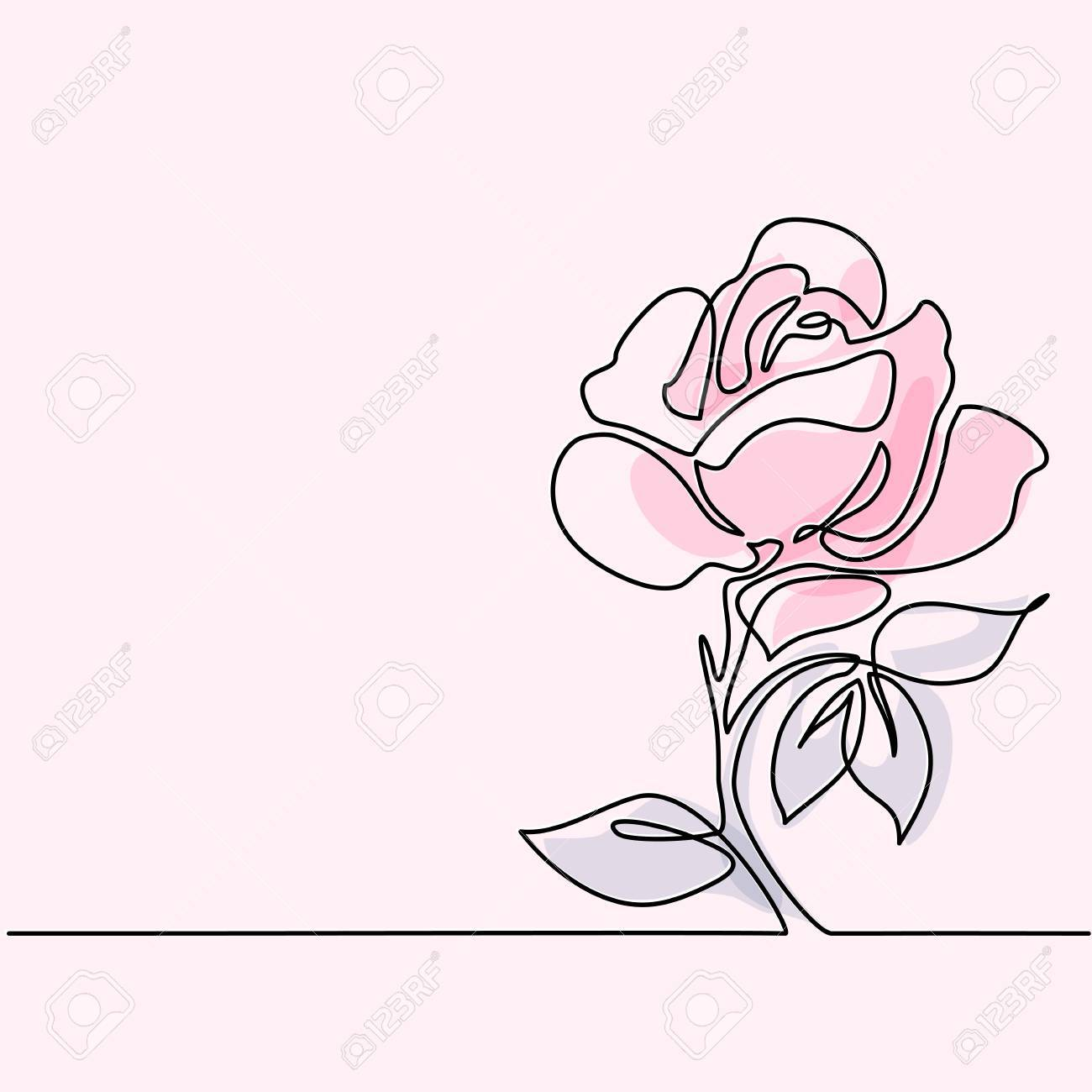 1300x1300 Beautiful Soft Color Rose Flowers. Continuous Line Drawing. Vector