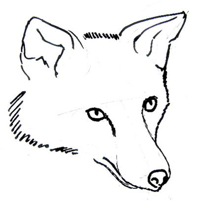 400x408 How To Draw Fox Head And Face