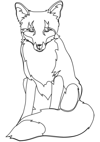 339x480 Red Fox Coloring Page Free Printable Coloring Pages