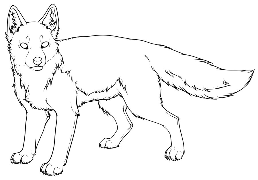 900x628 Swift Fox Lineart A By Pantheracorax