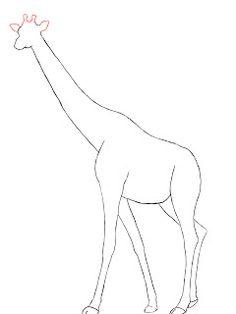 236x314 Photos Line Drawing Giraffe,