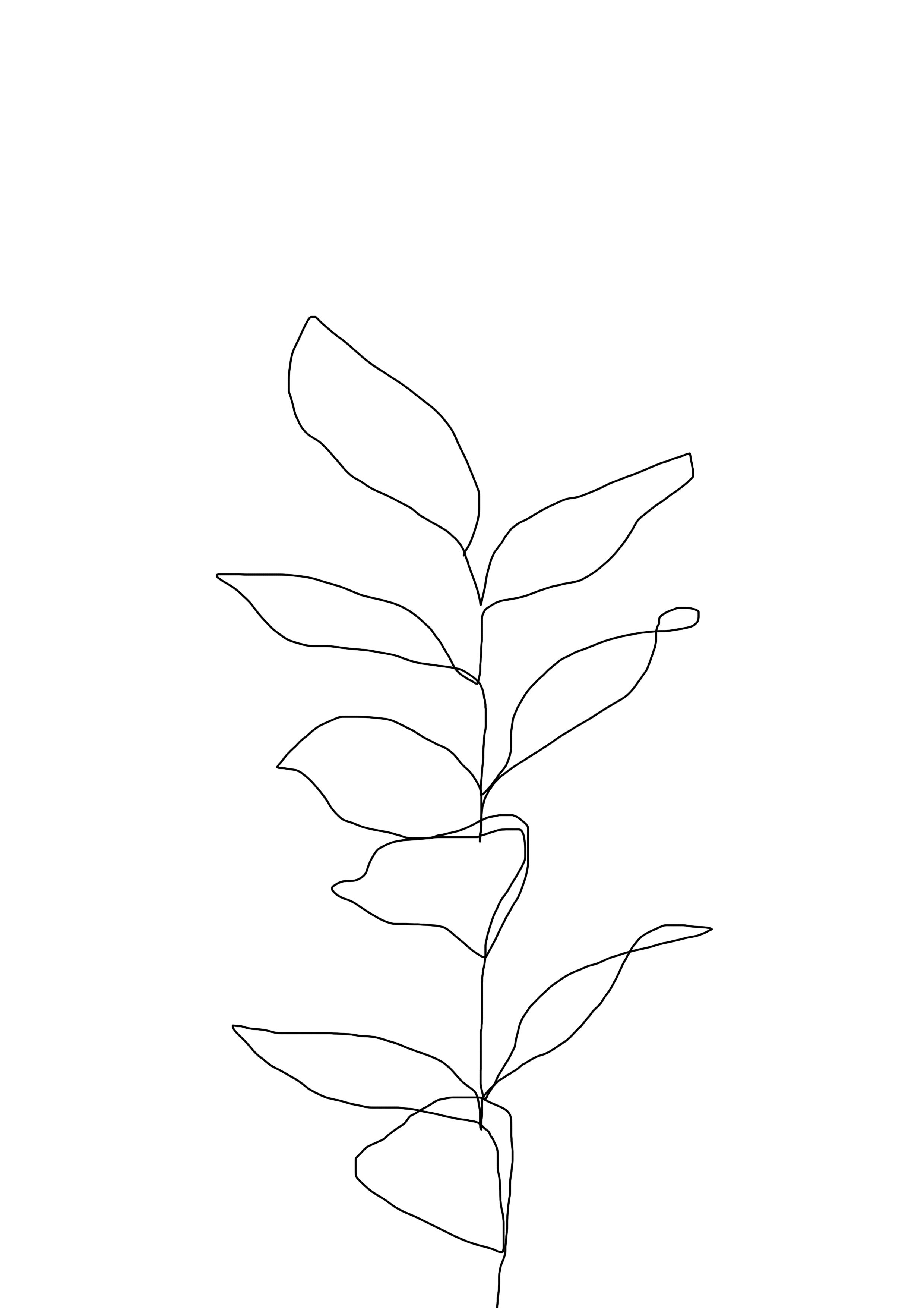 2480x3508 One Line Continuous Drawing From Plant. Minimal Illustration
