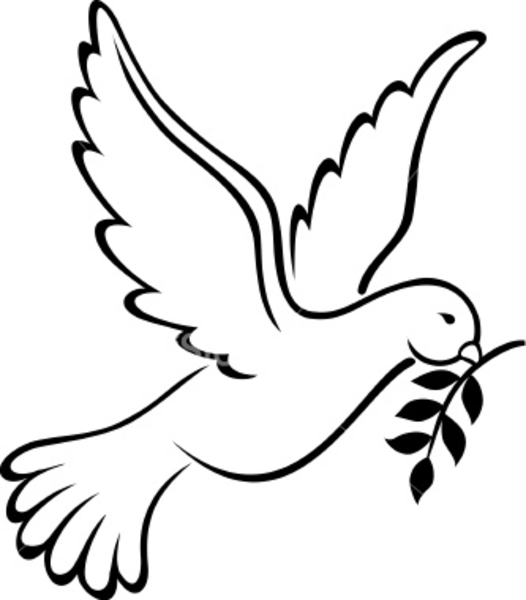 526x600 Dove Drawing Free Download Best Dove Drawing