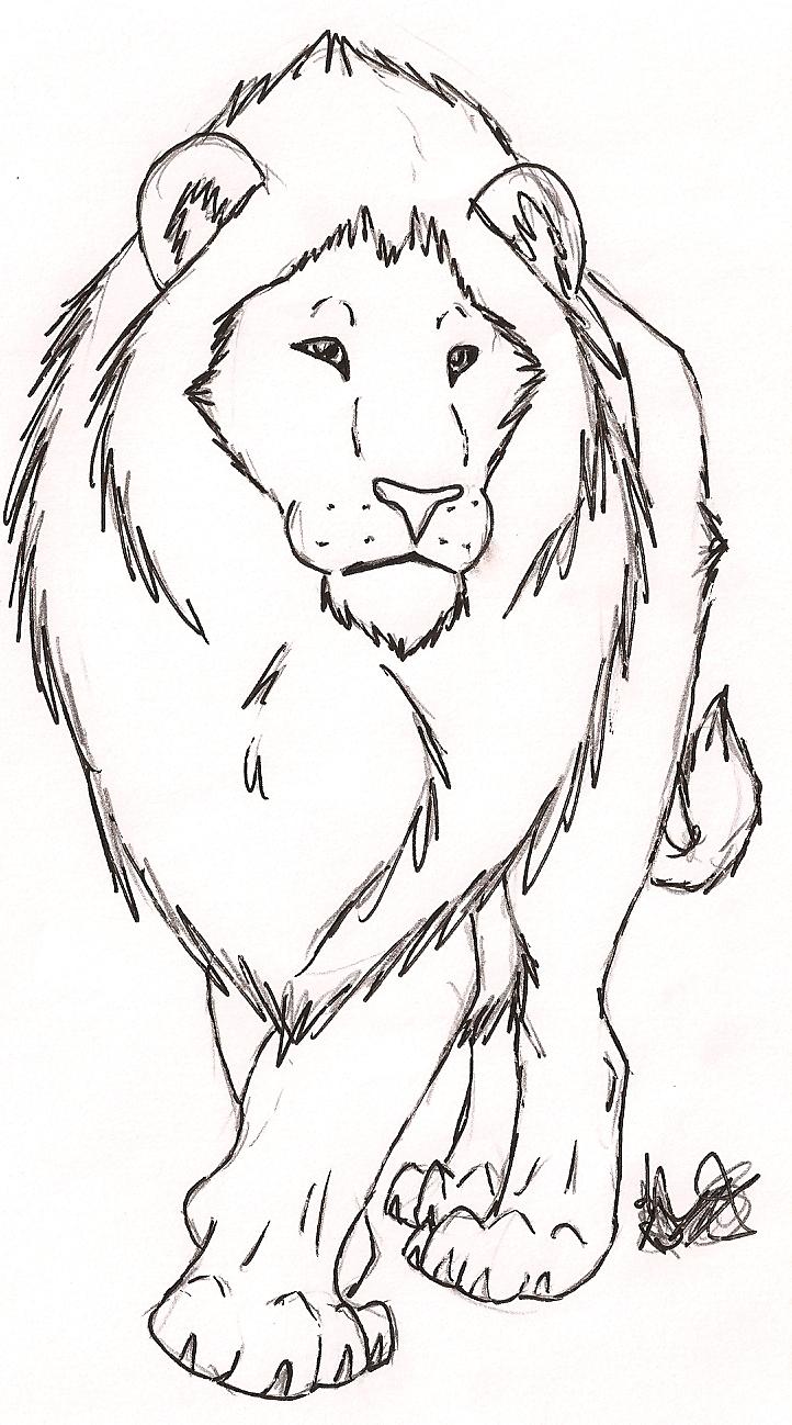 722x1298 Free Lion Sketch By Rurouna By Misfit Pride