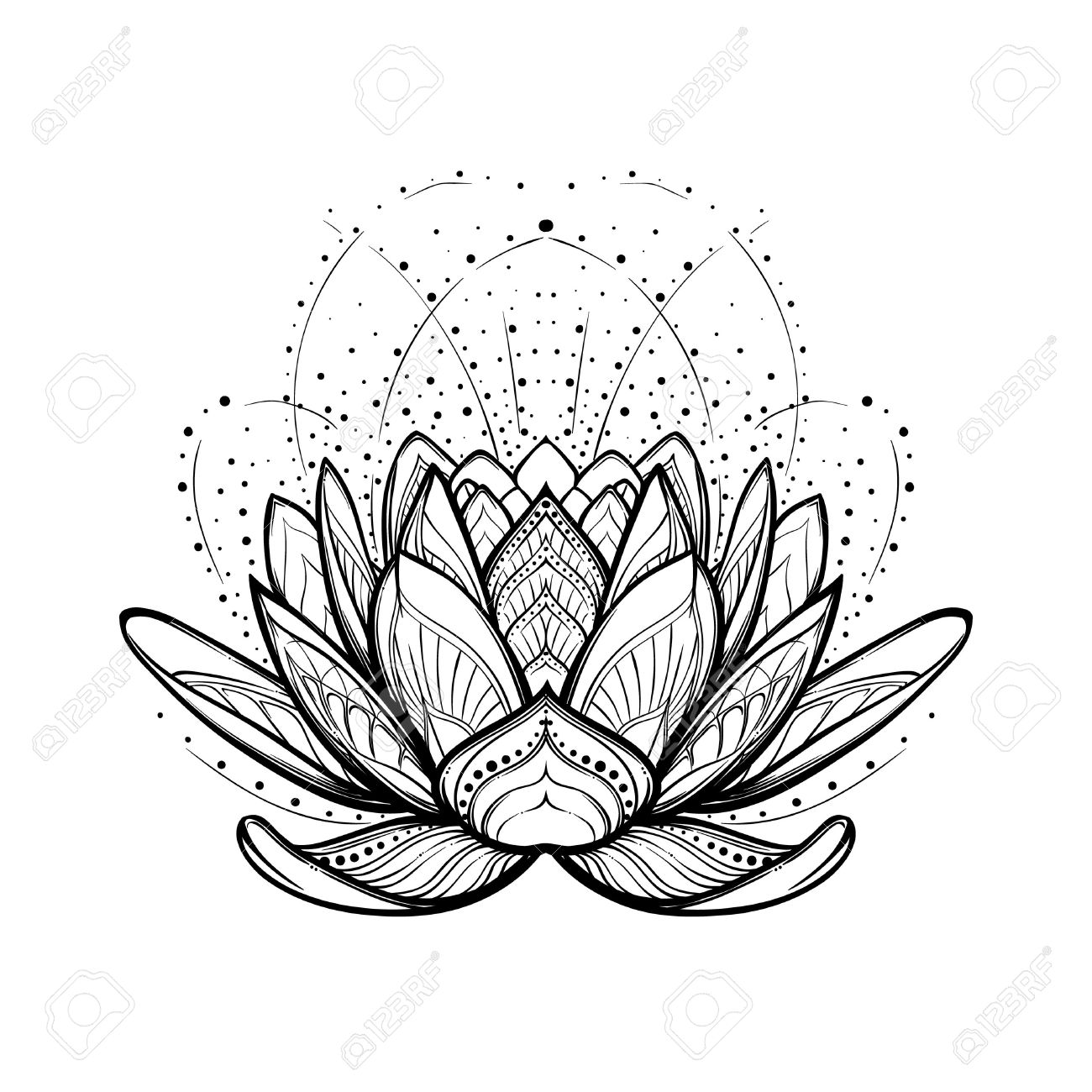 Line drawing lotus flower at getdrawings free for personal use 1300x1300 lotus flower intricate stylized linear drawing isolated on white mightylinksfo