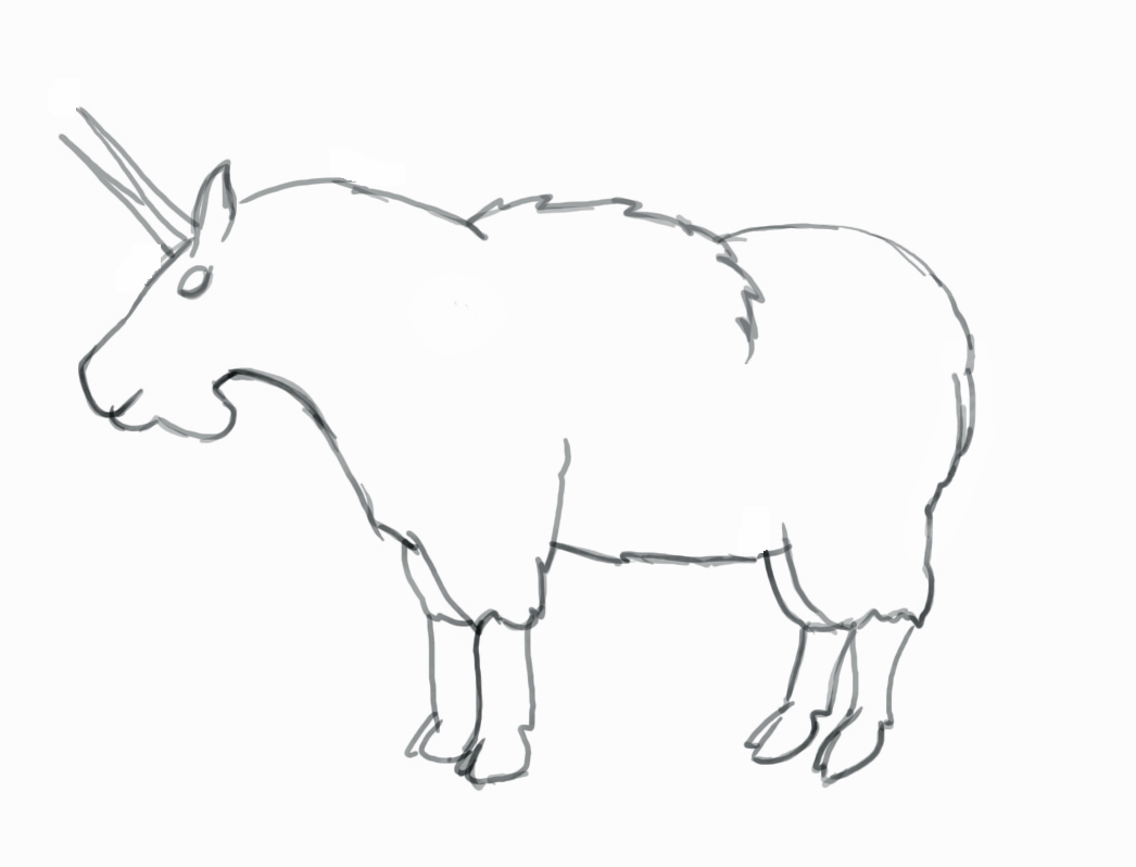 1046x798 Drawing Of A Goat How To Draw A Mountain Goat