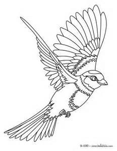 Line Drawing Of A Bird