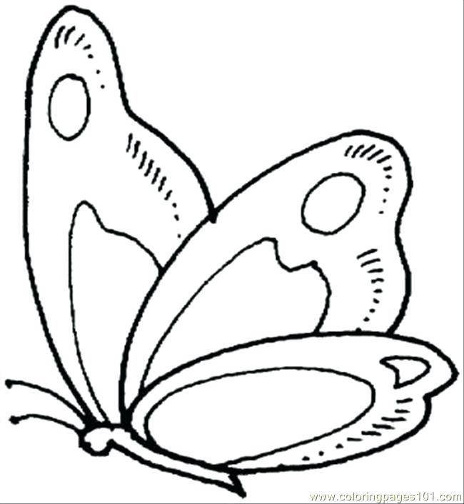 650x706 Here Are Butterfly Coloring Pages Images Cute Butterfly Line