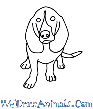 300x350 How To Draw A Hound Dog