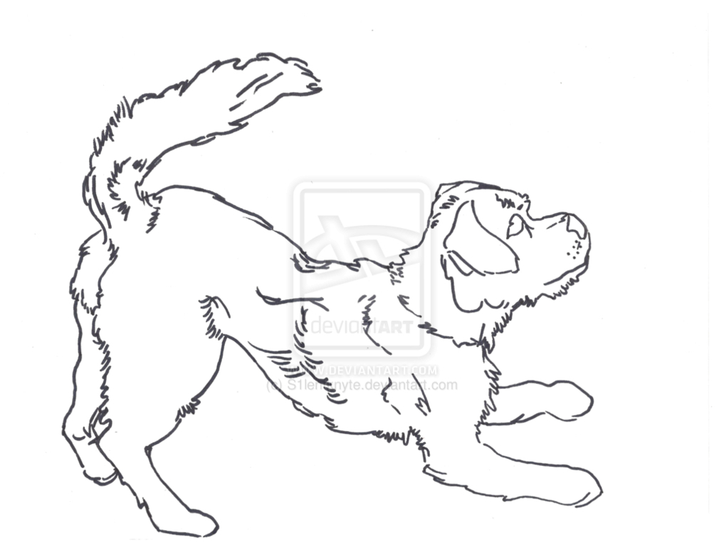 1017x786 Outline Drawing Of A Dog Outline Drawings Of Dogs Dog Outline