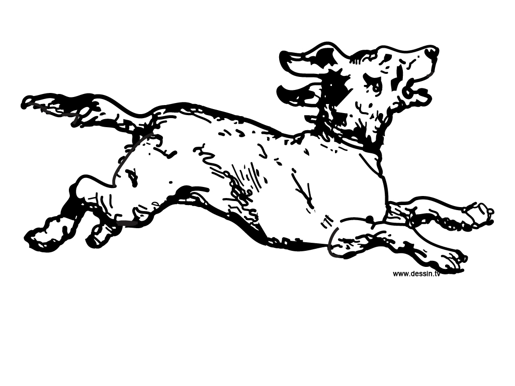 1024x768 Coloring Running Dog