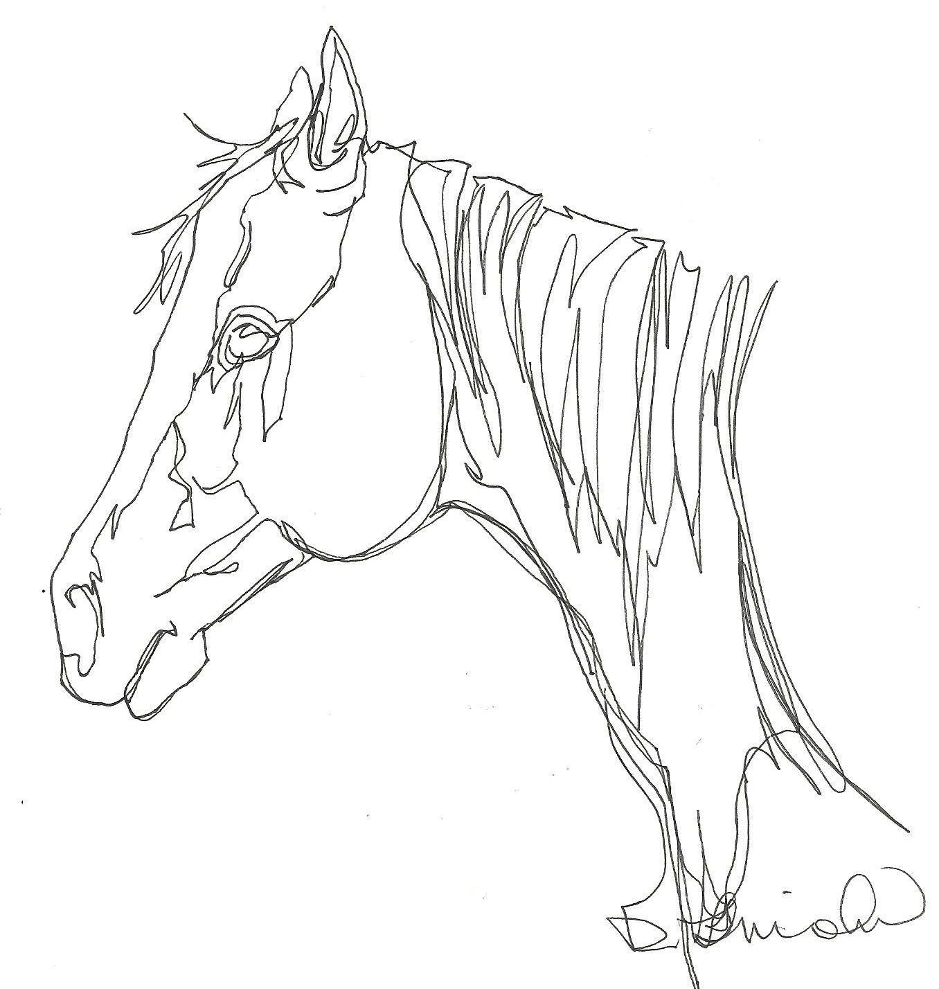1356x1428 Horse Head Continuous Line Drawing Original Art Painting By Debbie