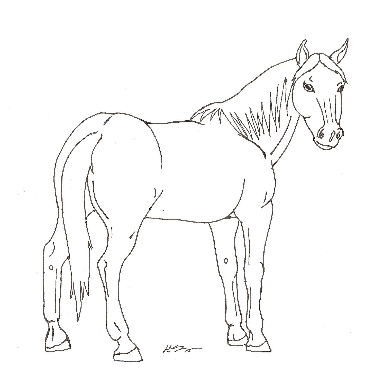 1525x1520 Standing Horse Line Art By Hopelesslife
