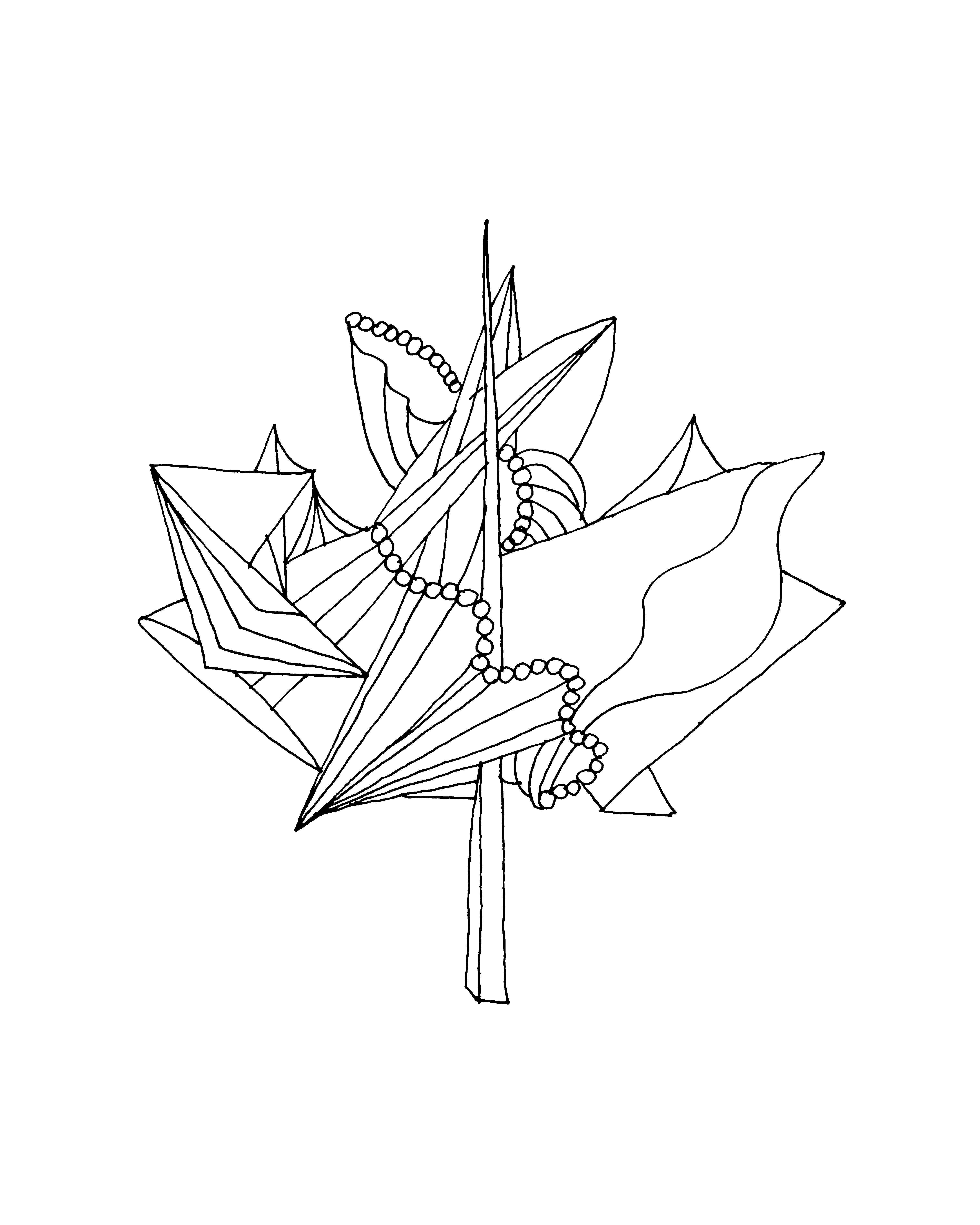 Line Drawing Of A Leaf