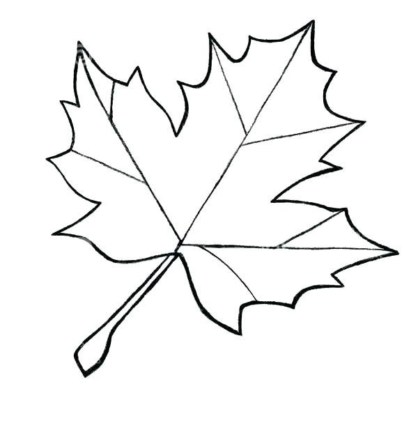 600x624 Coloring Page Leaf Printable Color Page Digital Coloring Sheet Zen