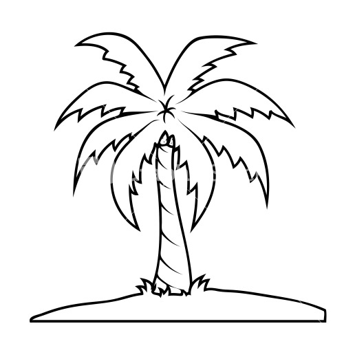 Line Drawing Palm Tree : Line drawing of a palm tree at getdrawings free for