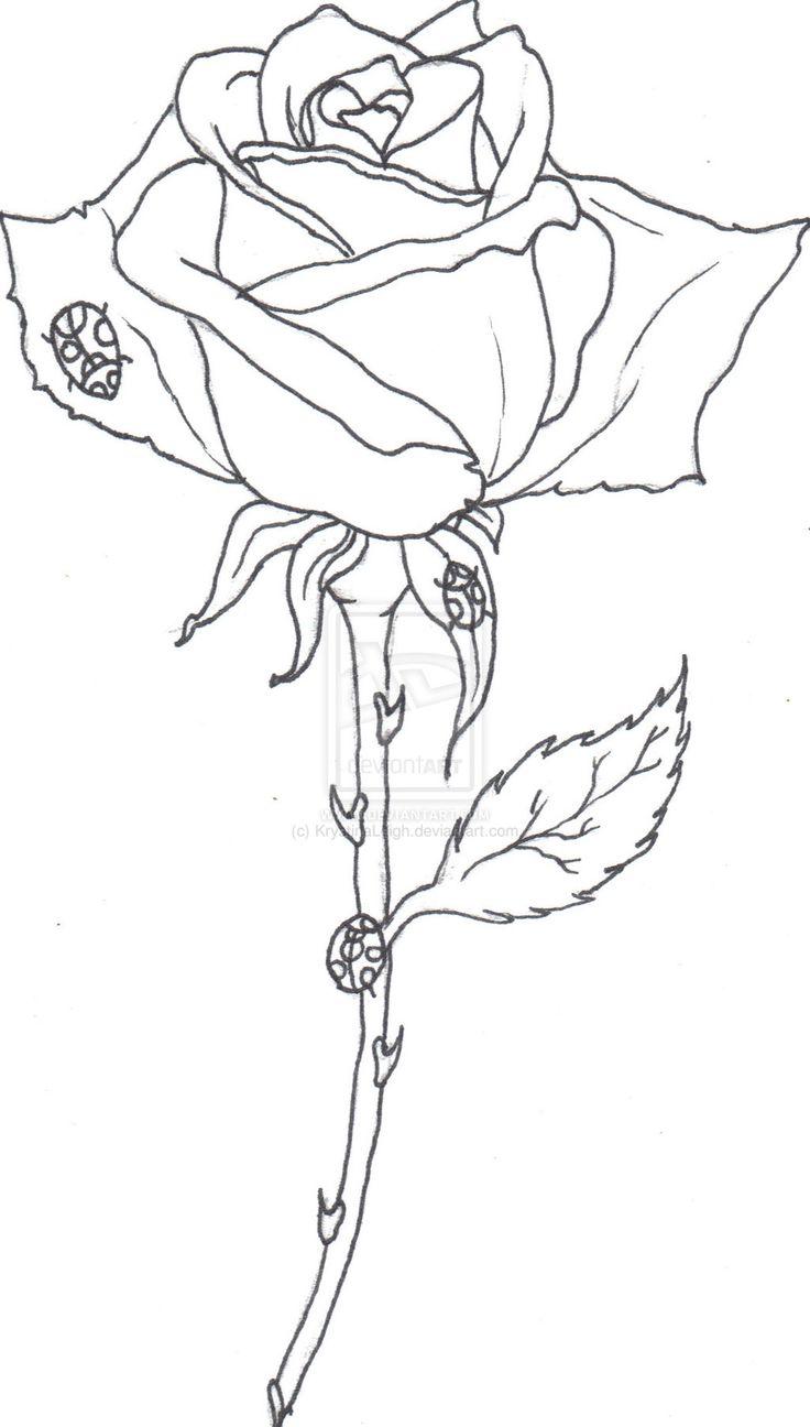 736x1296 Line Drawing Of Rose. Plantillas Rosas Para La Decoracin. Roses