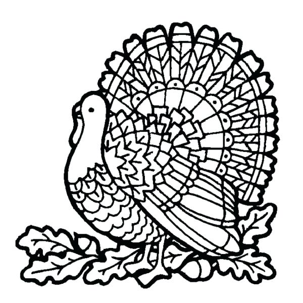 600x600 Coloring Turkey Printable Pictures Thanksgiving Coloring Pages