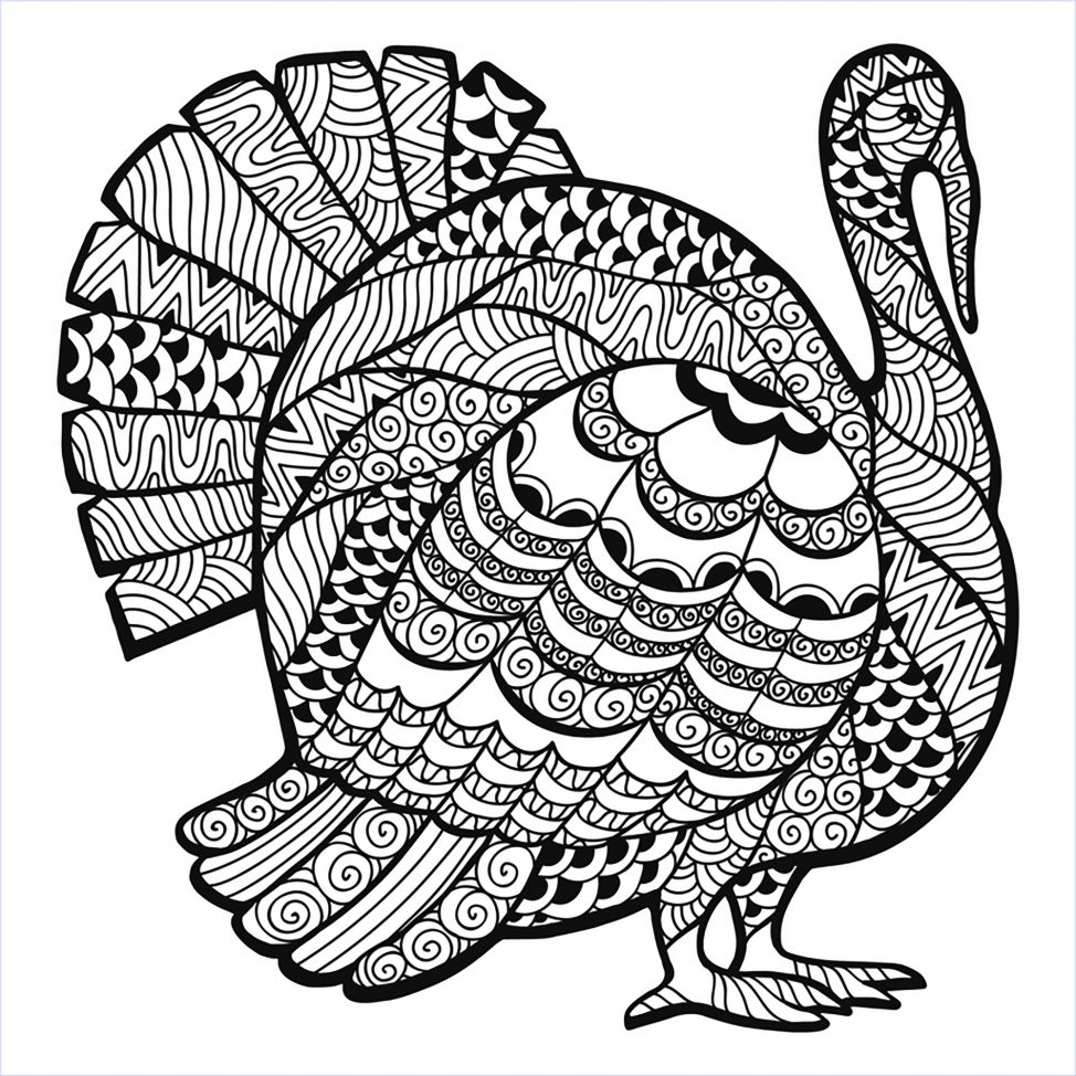 974x974 Coloring Pages Thanksgiving Zentangle 15 Turkey Coloring Pages