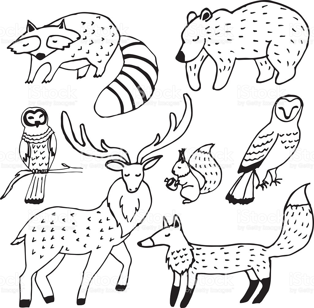 1024x1004 Forest And Animals Drawing Line Easy Animal Sketches
