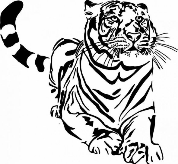 590x543 Forest Wild Animal Best Blog Line Drawings Of Wild Animals