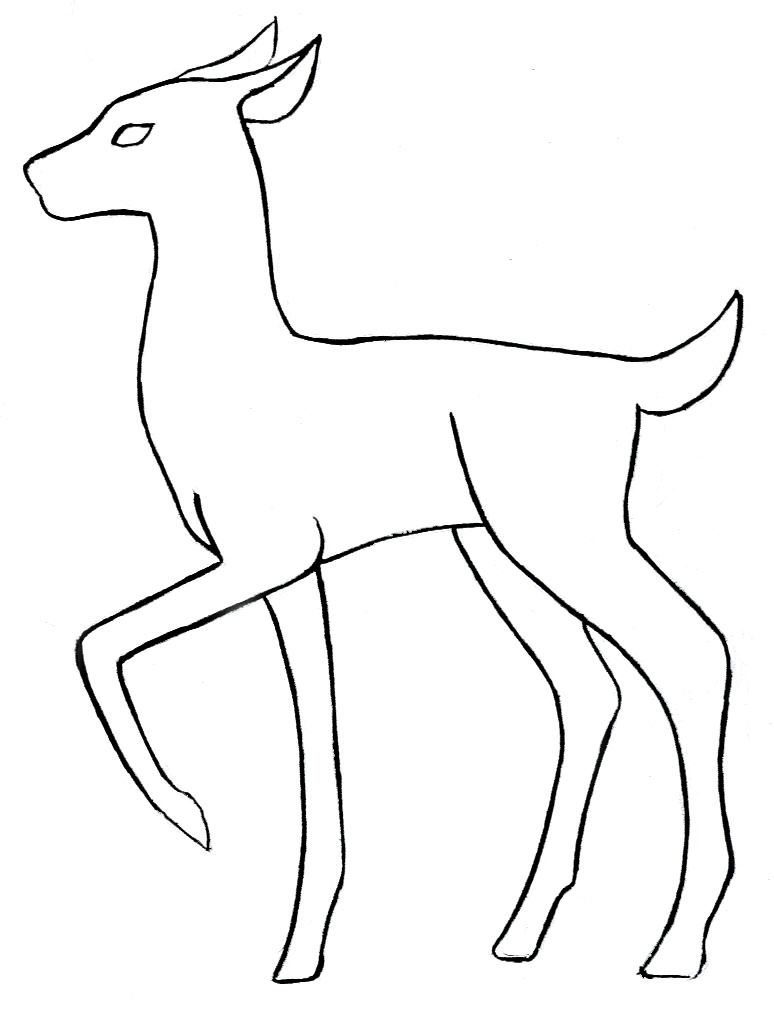 774x1020 Out Line Drawing Of Animals Animal Outline Drawings Elephant