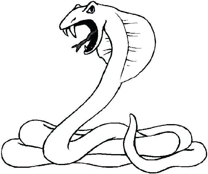 700x586 Astonishing Desert Animals Coloring Pages 64 In Line Drawings