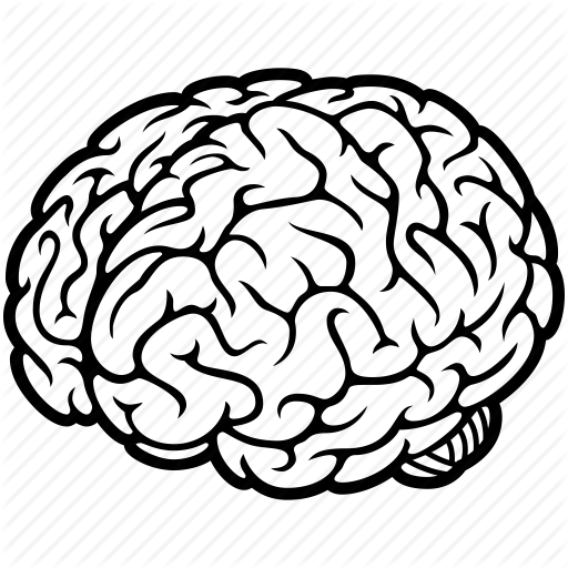 line drawing of brain at getdrawings com free for personal use rh getdrawings com brain vector graphic brain vector art